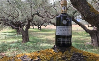"oliveoiltimes.com: ""Greek Farmers Expect Lower Yields as Harvest Nears"""